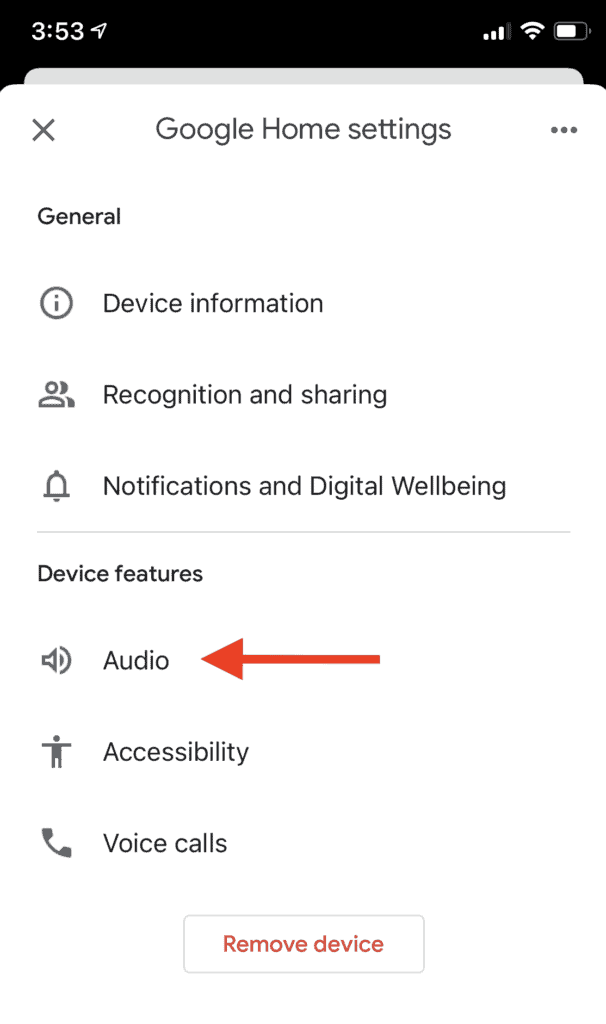 Google Home Screenshot showing the audio link to choose